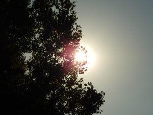 Meleg nyári idő 2016.08.25-én