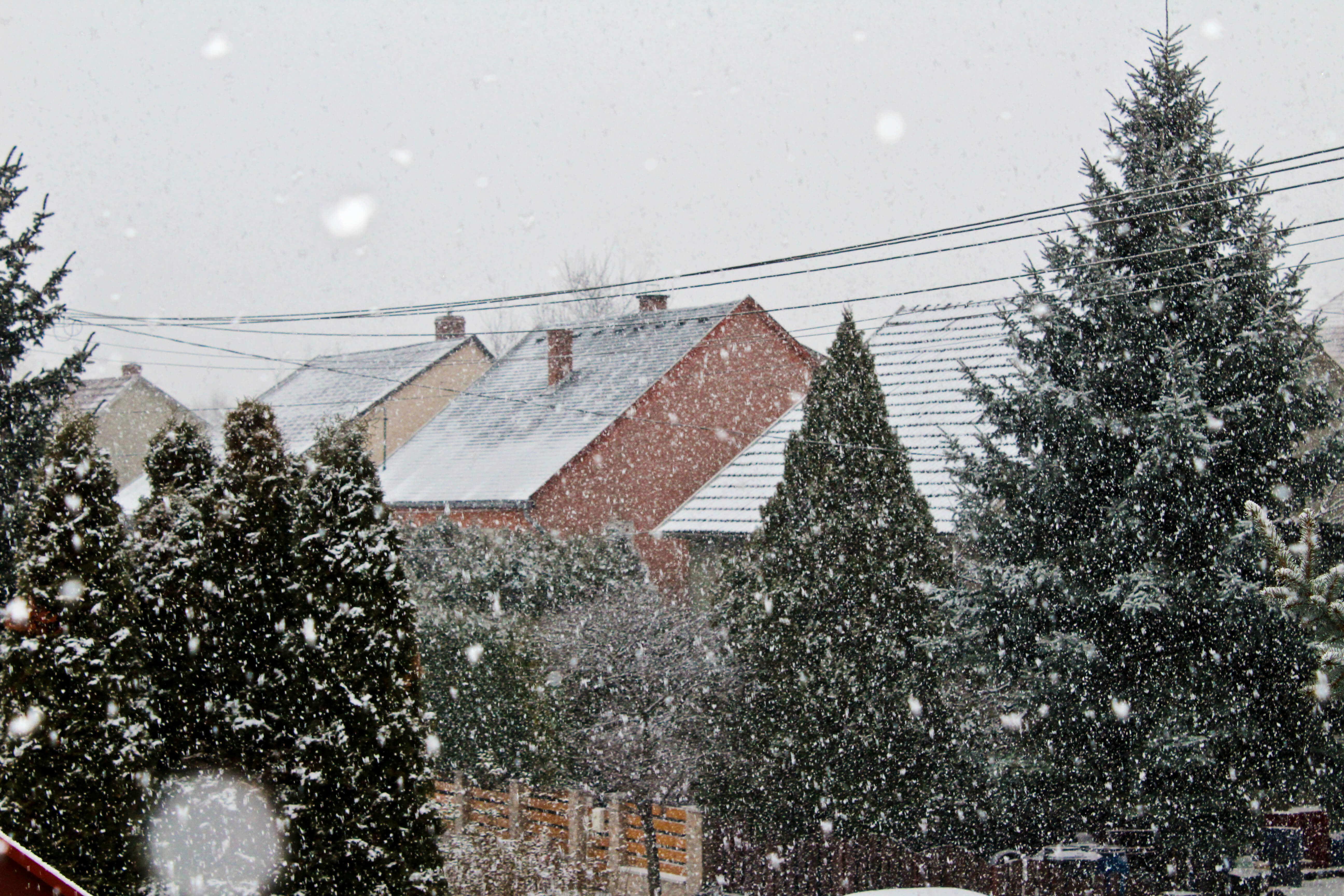 Havazás Dorogon